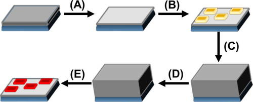 """Embedded silicon carbide """"replicas"""" patterned by rapid thermal"""