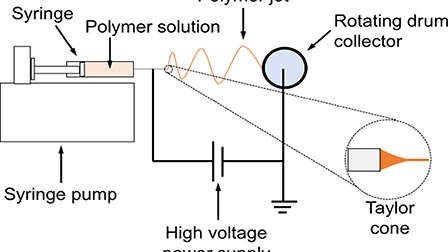 Effects of RF plasma modification on the thermal and